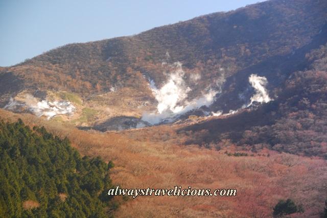 Hakone-ropeway 9