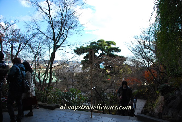 Hasedera Temple Kamukura Japan 6