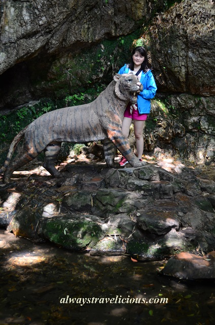 Hupao-spring-running-tiger-hangzhou 11
