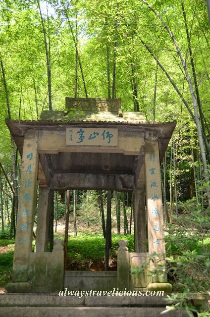 Hupao-spring-running-tiger-hangzhou 20