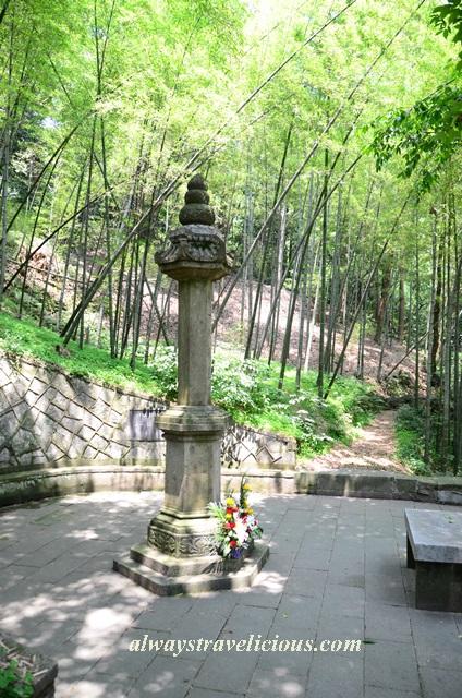 Hupao-spring-running-tiger-hangzhou 22