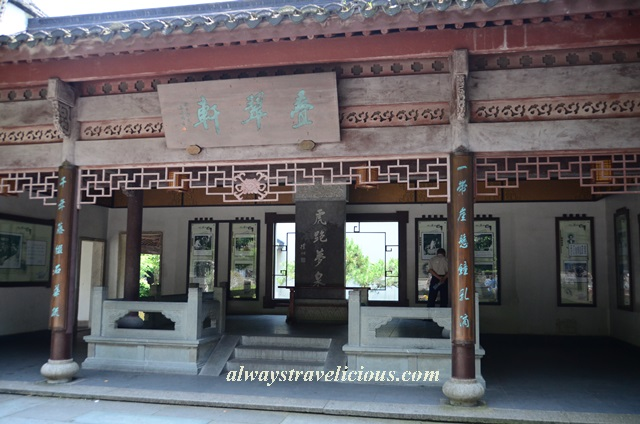 Hupao-spring-running-tiger-hangzhou 25