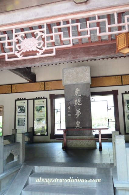 Hupao-spring-running-tiger-hangzhou 26