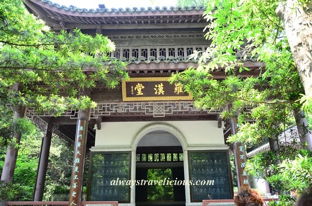Hupao-spring-running-tiger-hangzhou 27