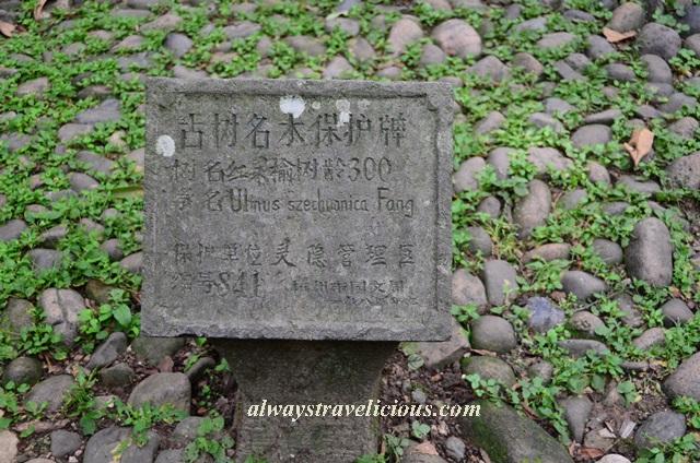 Lingyin-temple-hangzhou 2