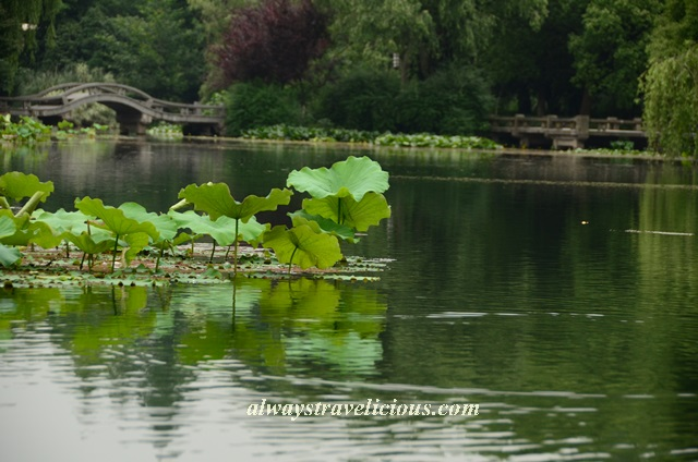 Lotus Breeze Winding Courtyard West Lake Hangzhou 8