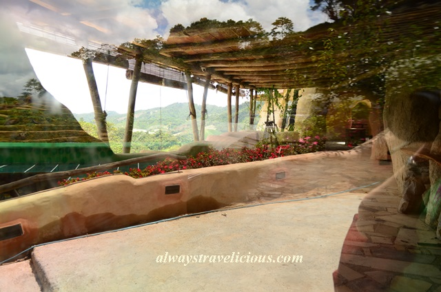Blueberry Earthhouse @ Cameron Highlands 3