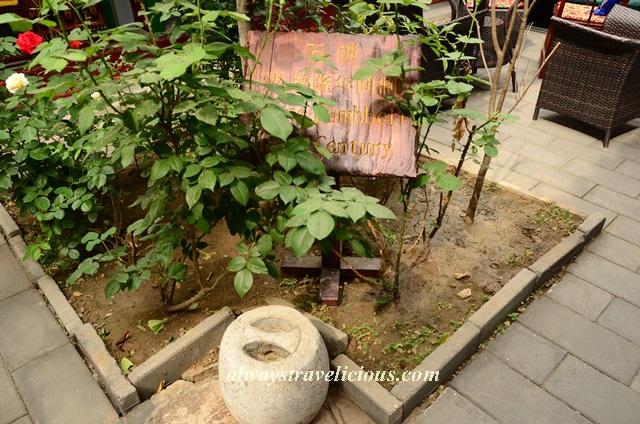 double happiness courtyard hotel beijing 12