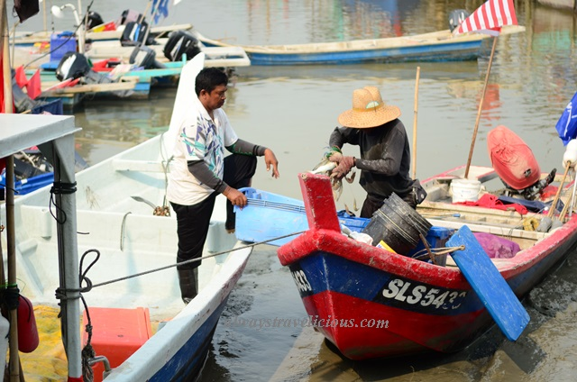 Fisherman's wharf @ Sekinchan